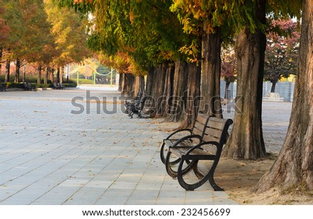 Benches beside walkway in th public park in autumn.