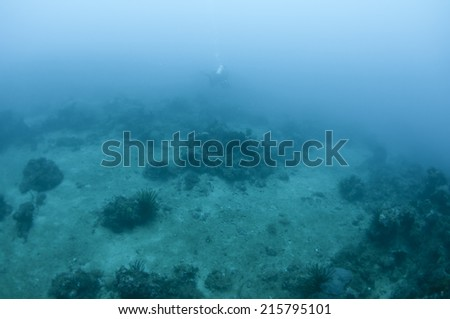 Beneath the surface - stock photo