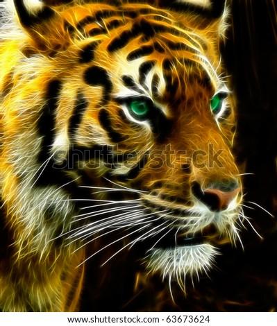 Bengal Tiger A fractal filtered image of a Bengal Tiger. - stock photo