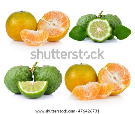 bergamot and tangerine on white background