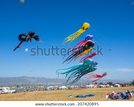 BERKELEY, CA/USA - July 26 2014: Hundreds of kites of all sizes are flown by amateurs and professionals in Cezar Chavez Park during Berkeley Kite Festival. - stock photo