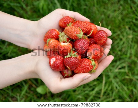 Berries a strawberry lie in female hands