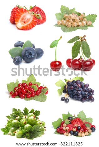 Berries fruit - stock photo