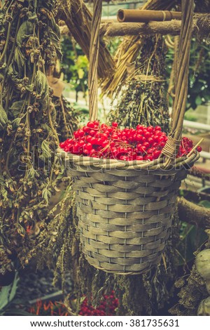 Berries in a basket and dried flowers - stock photo
