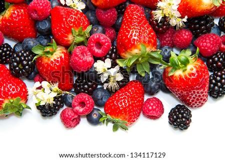 Berries on white Background - stock photo