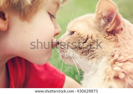 Best friends, boy kissing his cat - stock photo