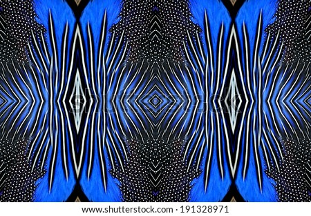 Best pattern of blue and back bird feathers in texture background - stock photo