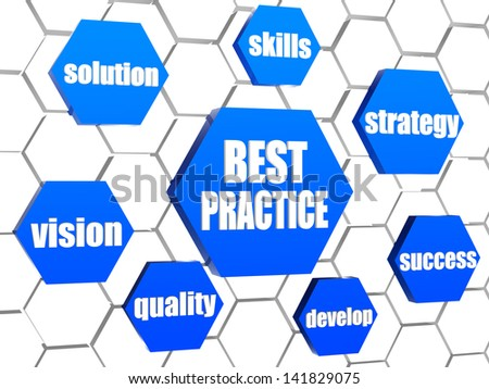 best practice and business concept words in 3d blue hexagons in cellular structure - stock photo