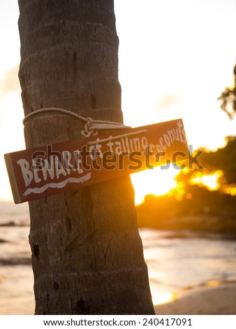Beware of falling coconuts board on the beach - stock photo