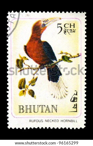 "BHUTAN - CIRCA 1968: A stamp printed in Bhutan shows the image of a bird - Aceros nipalensis with the inscription ""Rufous necked hornbill"" from the series ""Rare Birds"", circa 1968"