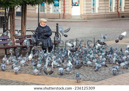 BIALOGARD, POLAND - NOVEMBER 27, 2014: Woman feeding pigeons in Liberty Square located in the hearth of the city.