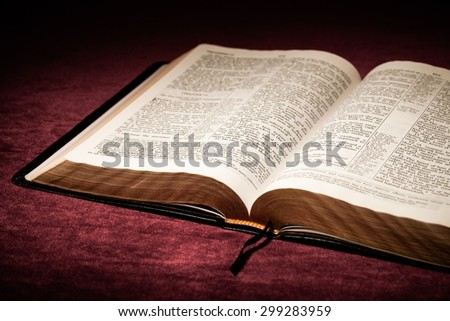 Bible, Open, Praying. - stock photo