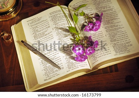 Bible open to Song of Solomon with flowers, pen, and wedding rings