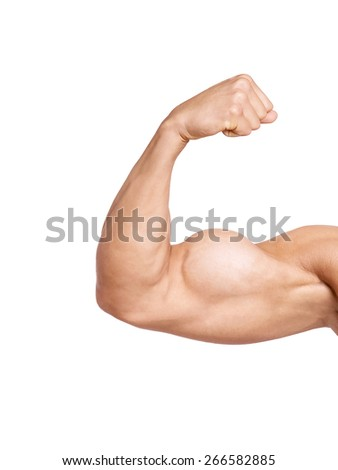 biceps isolated on white background - stock photo