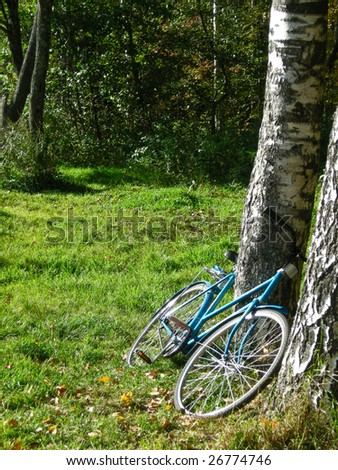 Bicycle at the trees