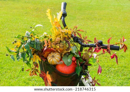 bicycle basket with pumpkins and autumnal leaves - stock photo