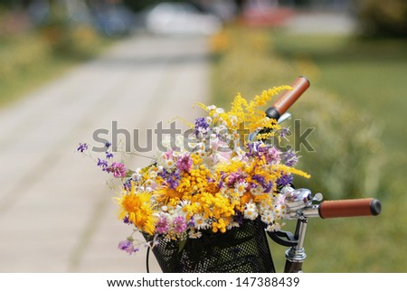 bicycle handlebar and  the basket with flowers on the blurred background - stock photo