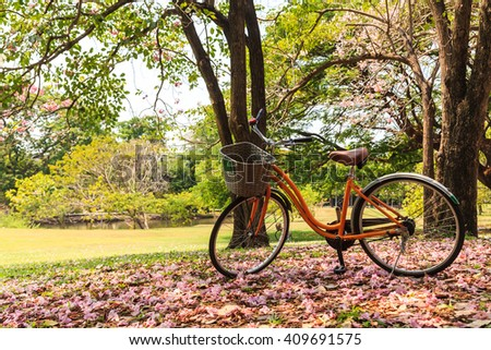 Bicycle in beautiful park