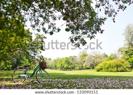 Bicycle in the park - stock photo