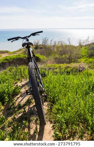 Bicycle on a rural road with grass - stock photo
