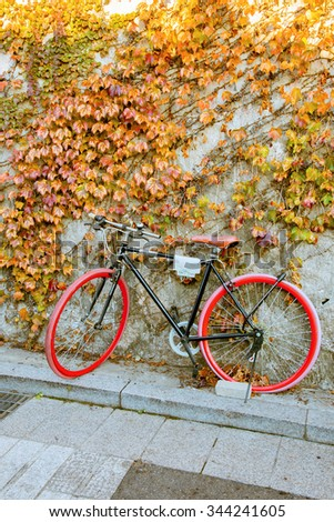 Bicycle on plant wall. - stock photo