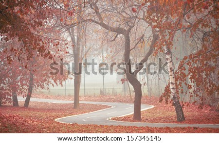 Bicycle path in autumn - stock photo