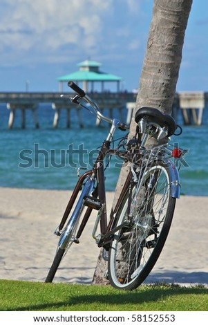 Bicycle resting on a palm tree, by a walkway, at Deerfield Beach, in Florida - stock photo