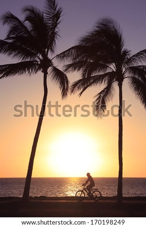 Bicycle Rider and Palm Tree Silhouette at Sunset