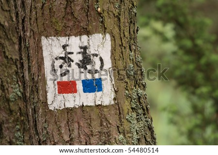 bicycle tree sign close up - stock photo