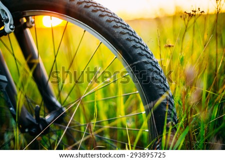 Bicycle Wheel In The Summer Green Grass Meadow Field. Close Up Detail - stock photo
