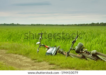 bicycles in the field