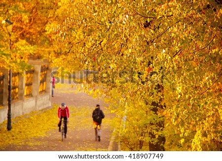 Bicyclist riding a bike in autumnal park at sunset