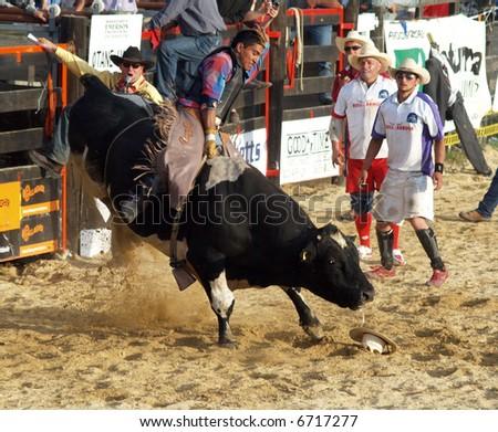 Big Bad Bull - stock photo