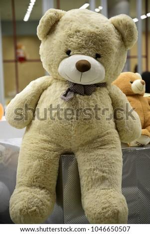 Big bear doll on gift box stock photo royalty free 1046650507 big bear doll on the gift box publicscrutiny Gallery