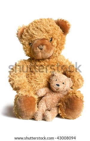 Big bear with bear cub isolated on the white background - stock photo