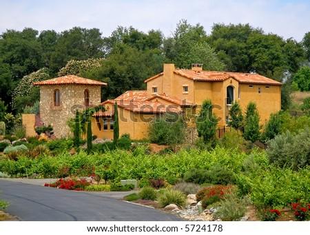 Big beautiful house and vineyard - stock photo