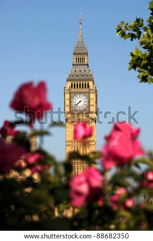 Big Ben with roses in London, UK - stock photo