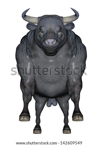 Big black agressive bull standing in front of you ready to charge in white background - stock photo