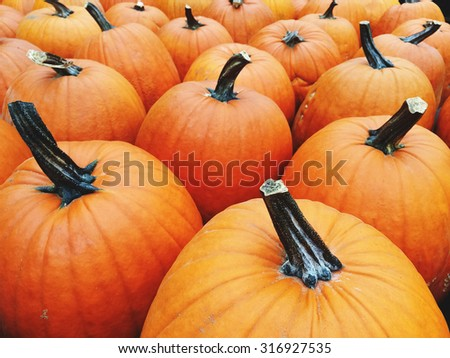 Big bright orange pumpkins at the autumn marketplace. - stock photo