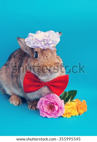 Big brown rabbit in red bow-tie with roses