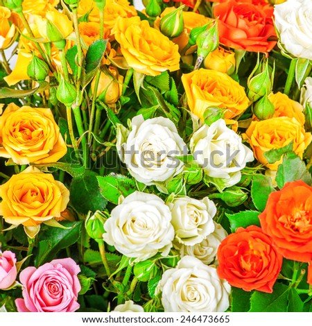 Big bunch of beautiful flowers. A lot of multicolored roses - floral background - stock photo