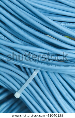 big bunch of blue network cable