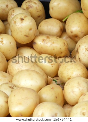 Big bunch of yellow potatoes at market