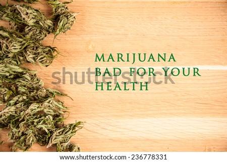 big canabis marijuana plant detail on wood table - stock photo