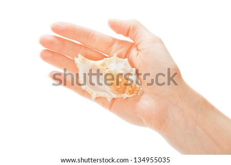 Big cockleshell on the female palm, isolated on white - stock photo