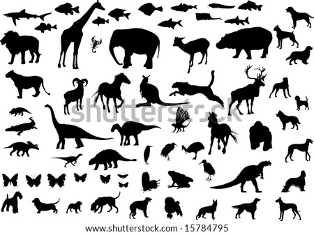 Big collection of animals silhouettes