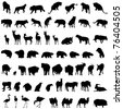 Big collection of different animal silhouettes - stock vector