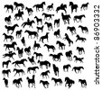 Big collection of different horses silhouettes - stock photo