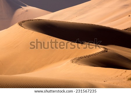 Big Daddy Dune, Sossusvlei, Namib-Naukluft National Park, Namibia - stock photo