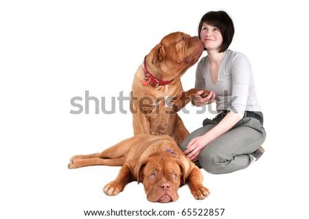Big dogue de bordeaux givig a kiss to its master - stock photo